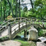 9 Ways You Can Transform Your Garden